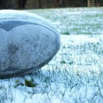 Rugby Ball in the garden